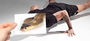 zuu-cobra