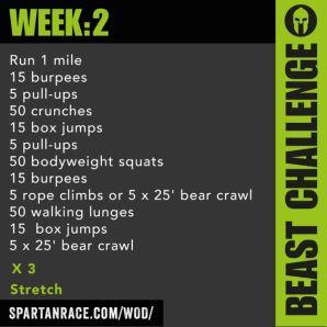 Beast week2
