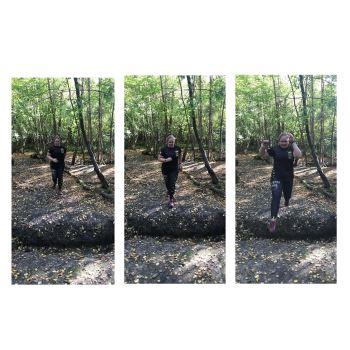 wildforest1